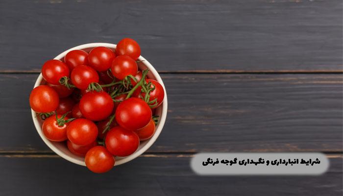 شرایط-انبارداری-و-نگهداری-گوجه-فرنگی