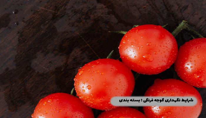 شرایط-نگهداری-گوجه-فرنگی-؛-بسته-بندی