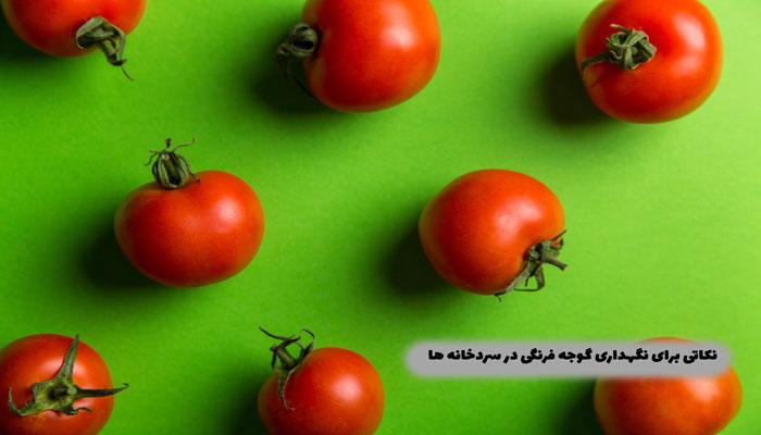 نکاتی-برای-نگهداری-گوجه-فرنگی-در-سردخانه-ها