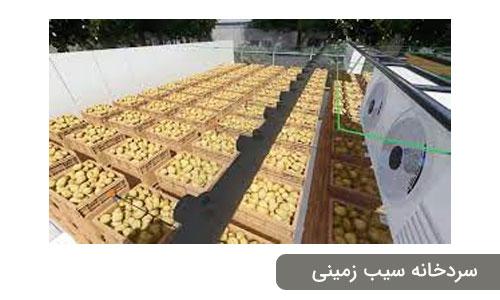 سردخانه سیب زمینی