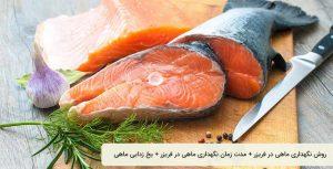 روش نگهداری ماهی در سردخانه