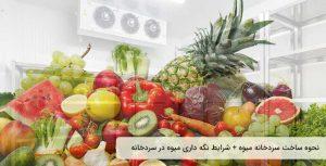 سردخانه میوه، نحوه ساخت سردخانه میوه، شرایط نگهداری میوه در سردخانه