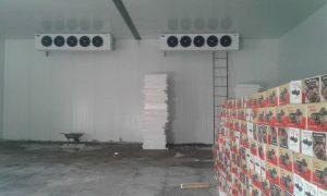 سردخانه زاهدان