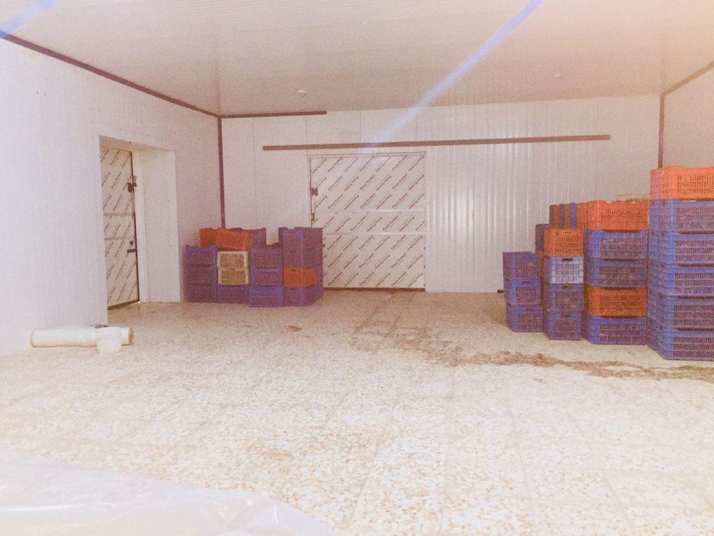محصولات قابل نگهداری در سردخانه کرمانشاه